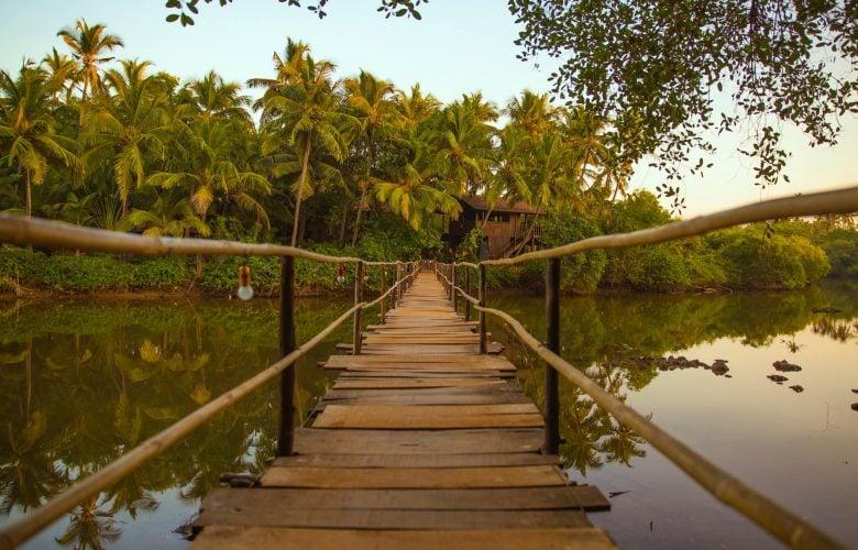 Ashiyana Yoga and Spa Village, India Wellness