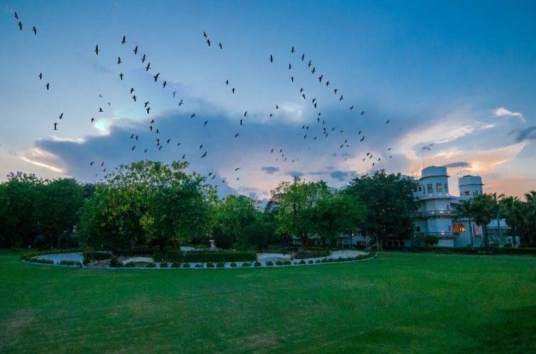 Taj ushra india medical tourism